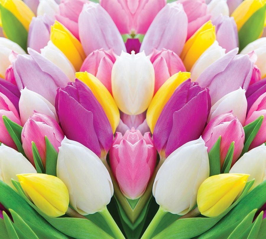 Фотошторы «Разнообразие тюльпанов» вид 1