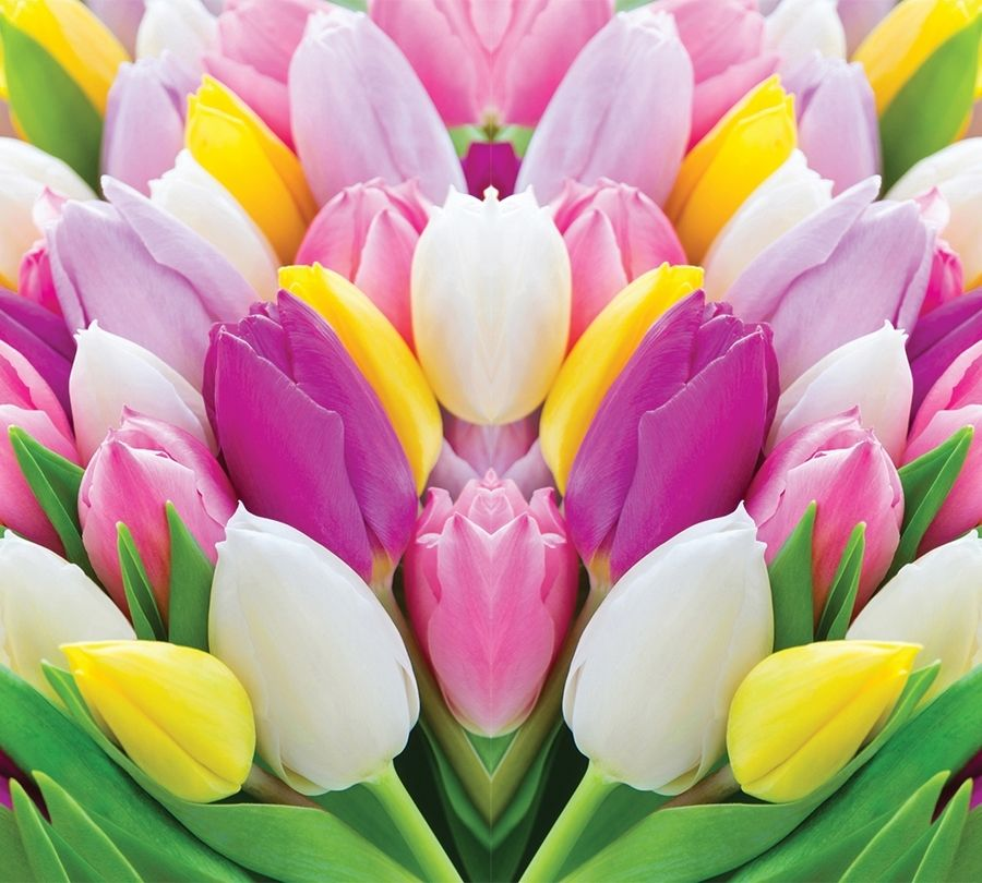 Фотошторы Разнообразие тюльпанов<br>kit: None; gender: None;