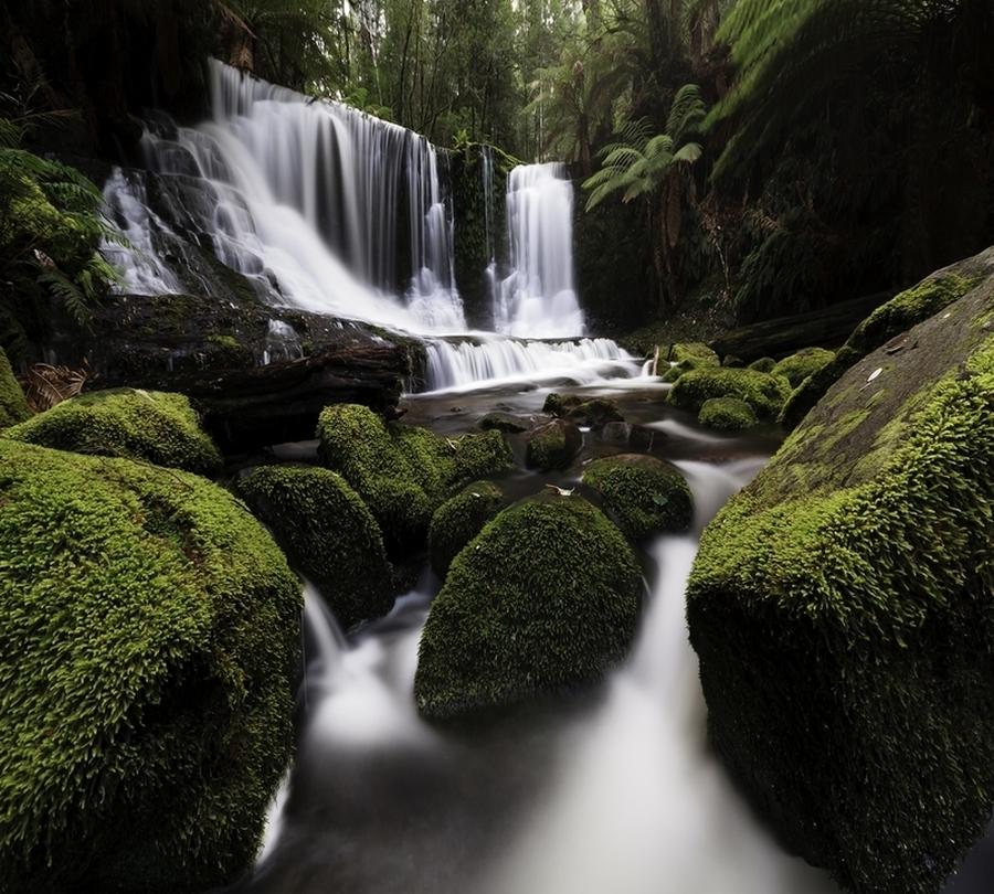 Фотошторы Водопад в тропическом лесу<br>kit: None; gender: None;