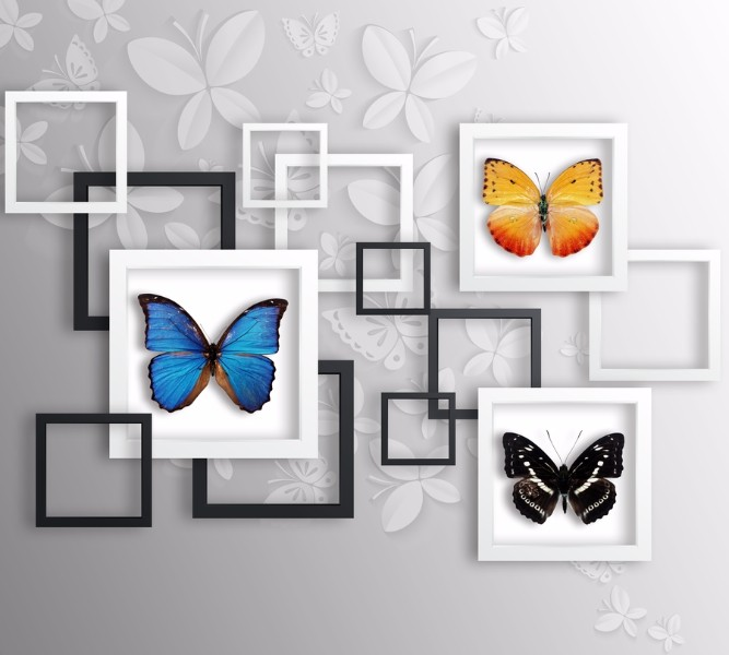 Фотошторы Коллекция бабочек<br>kit: None; gender: None;
