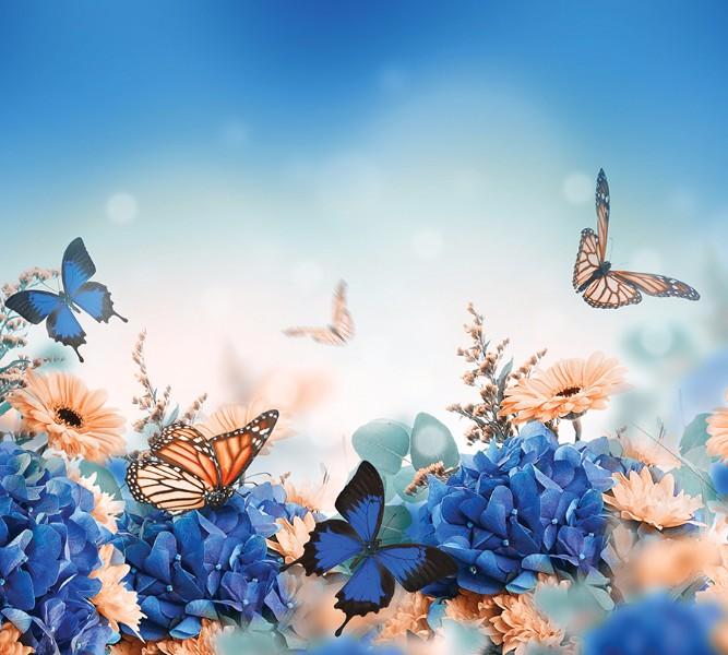 Фотошторы Синие бабочки<br>kit: None; gender: None;