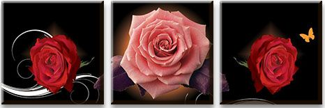 Модульная картина Сияющие розы на темном фоне<br>kit: None; gender: None;
