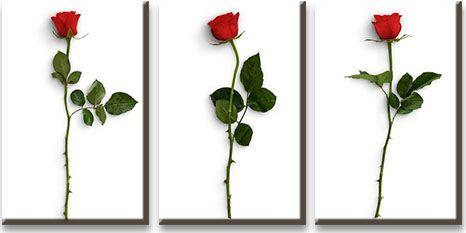 Модульная картина Объемные красные розы<br>kit: None; gender: None;