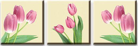 Модульная картина Светло розовые тюльпаны<br>kit: None; gender: None;