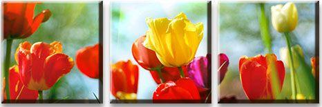 Модульная картина Тюльпаны на лугу<br>kit: None; gender: None;