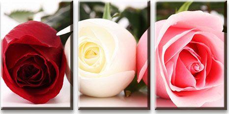 Модульная картина Бордовая белая и розовая розы<br>kit: None; gender: None;