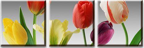 Модульная картина Тюльпаны на сером фоне<br>kit: None; gender: None;
