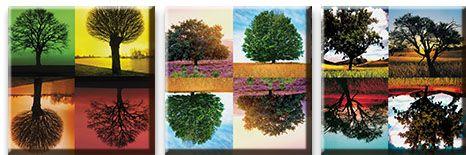 Модульная картина Деревья в отражении<br>kit: None; gender: None;