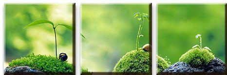 Модульная картина Зеленые ростки<br>kit: None; gender: None;