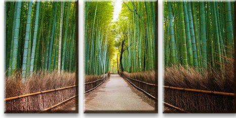 Модульная картина Аллея в бамбуковом лесу<br>kit: None; gender: None;