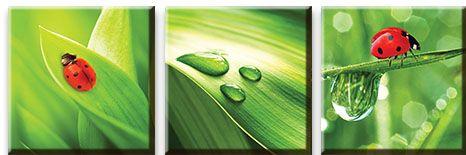Модульная картина Божьи коровки на траве с росой<br>kit: None; gender: None;