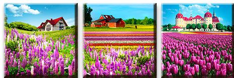 Модульная картина Поместья в цветочных полях<br>kit: None; gender: None;