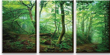 Модульная картина Зеленые джунгли<br>kit: None; gender: None;