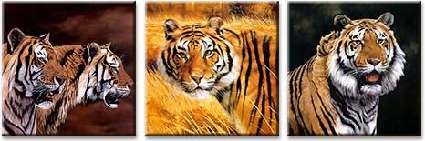 Модульная картина Тигр в поле вечером<br>kit: None; gender: None;