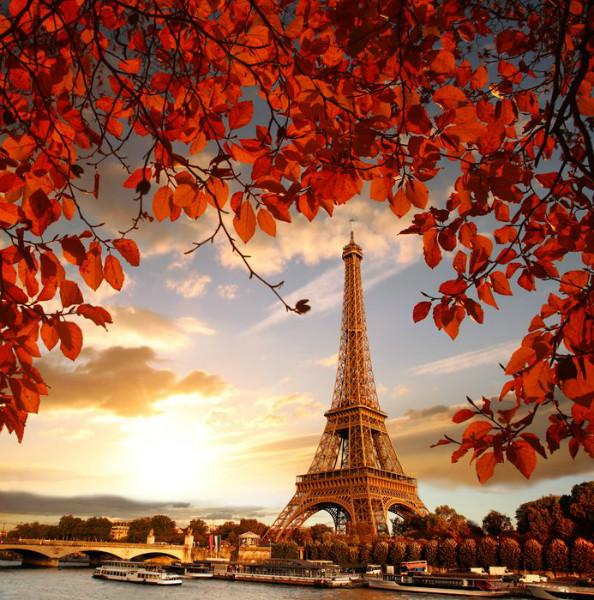 3D Фотообои «Яркая осень в Париже»<br>kit: None; gender: None;