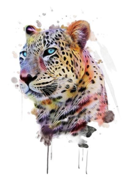 3D Фотообои «Красочный леопард»<br>kit: None; gender: None;
