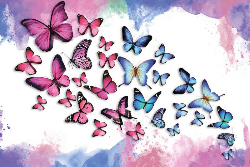 3D Фотообои «Красочные бабочки»<br>kit: None; gender: None;