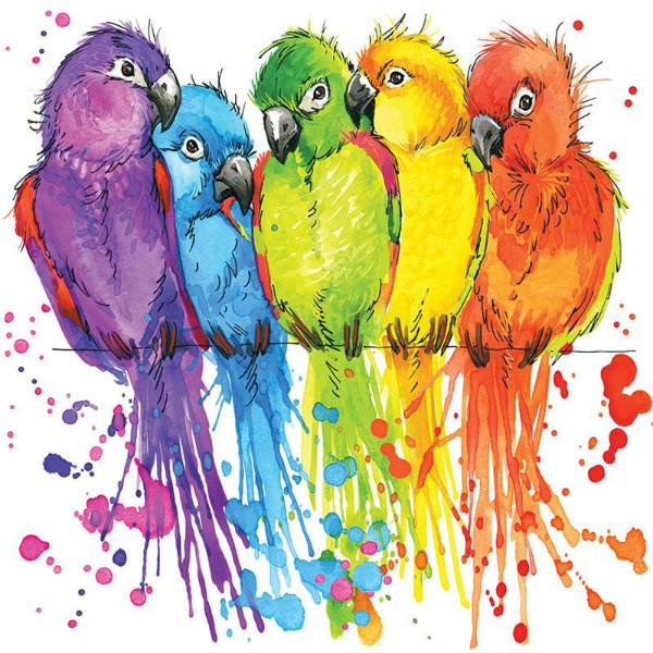 3D Фотообои «Яркие попугайчики»<br>kit: None; gender: None;