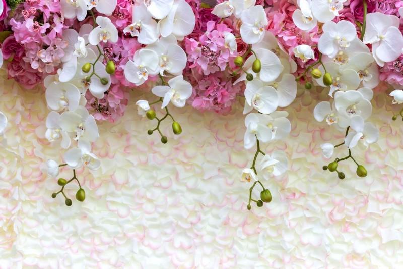 "Фотообои ""«Ниспадающие орхидеи»"""