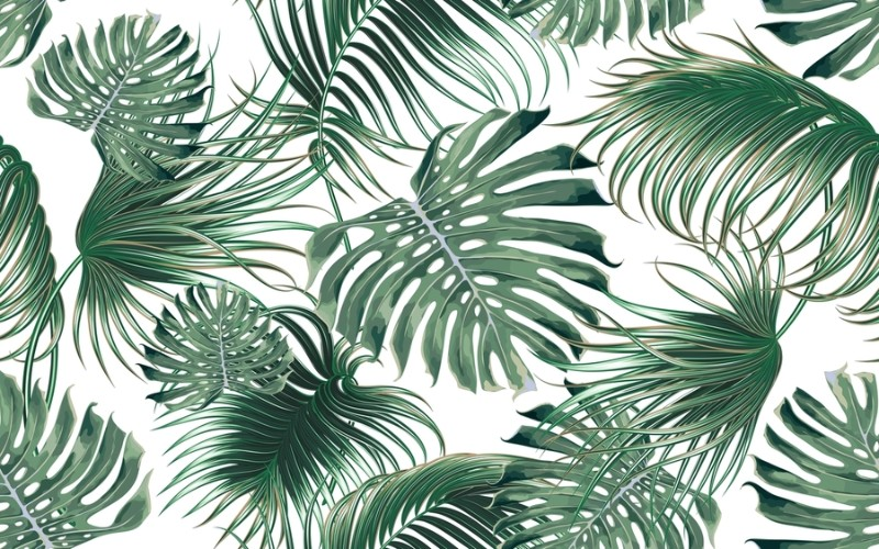 3D фотообои «Листья папоротника» вид 1