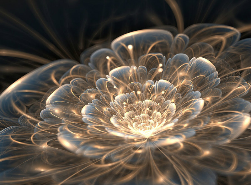 3D Фотообои «Магический цветок»<br>kit: None; gender: None;