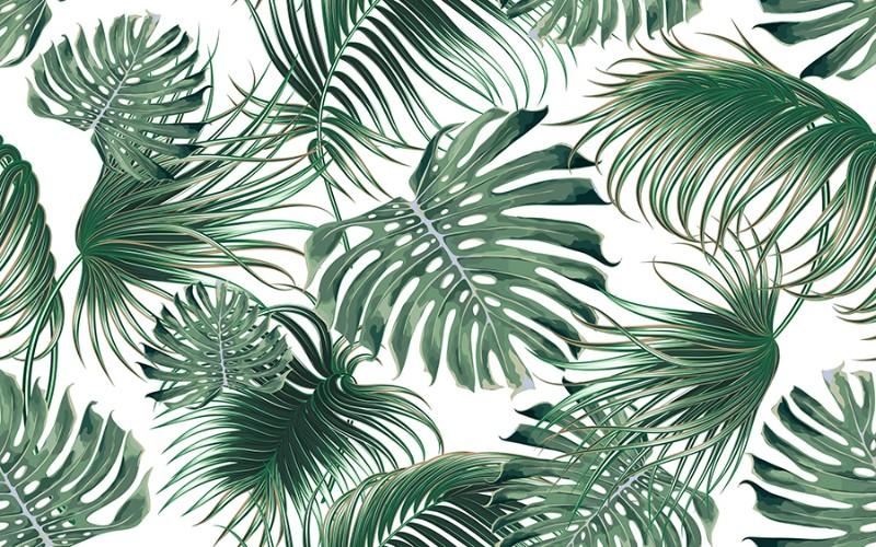 3D фотообои 3D Фотообои  «Листья папоротника» вид 1
