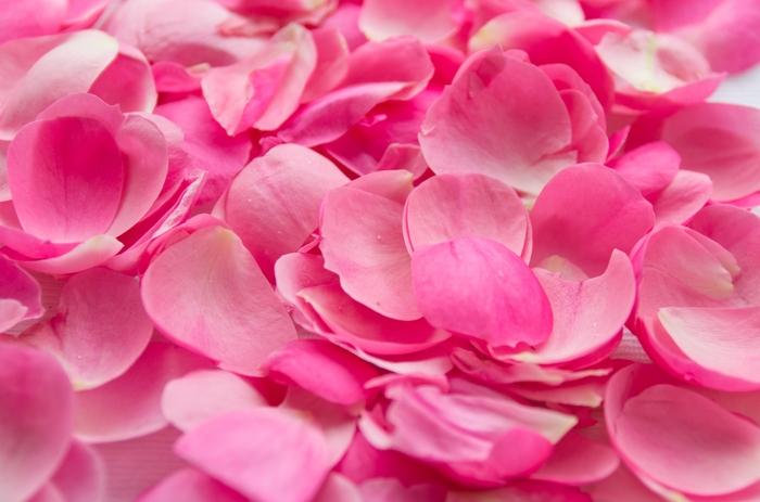 3D Фотообои «Лепестки розовой розы»<br>kit: None; gender: None;