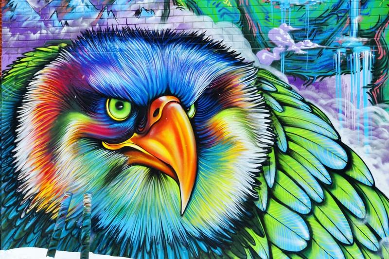 3D фотообои 3D Фотообои «Хищный орел» вид 1