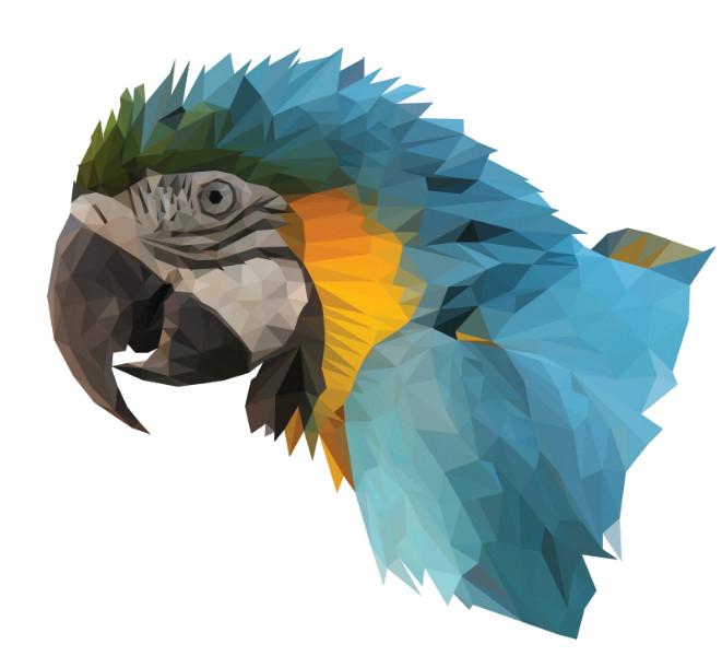 3D Фотообои «Полигональный попугай»<br>kit: None; gender: None;