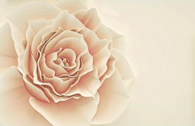 3D Ковер «Изысканная роза»
