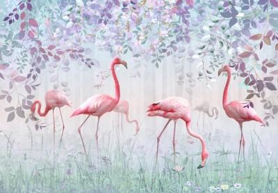 3D Фотообои «Фламинго в саду»