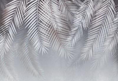 3D Фотообои «Туманный занавес»