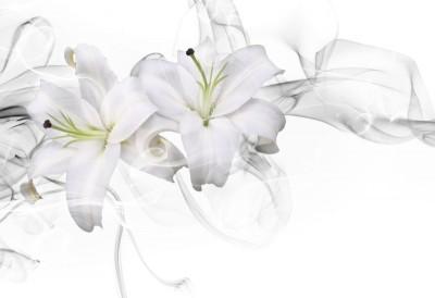 3D Фотообои «Пара белых лилий в дымке»