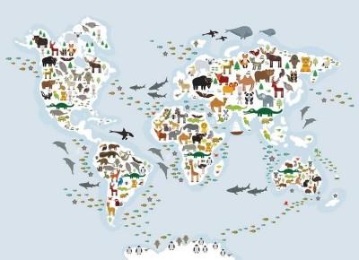 3D Фотообои «Схематичная карта мира»