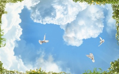 3D Фотообои «Голуби в облаках»
