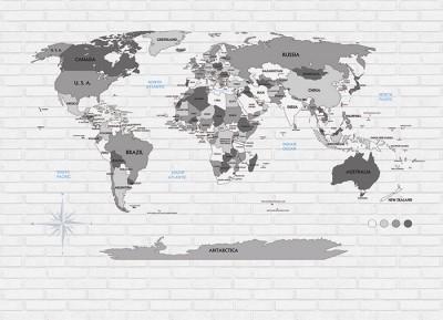 3D Фотообои «Карта на стене в стиле лофт»