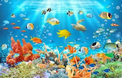 3D Фотообои «Разноцветный подводный мир»