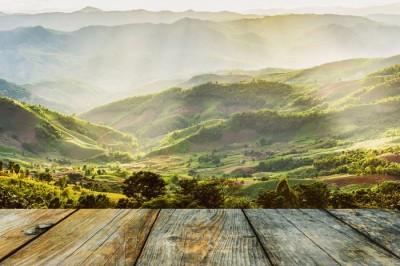 3D Фотообои «Зеленая долина»