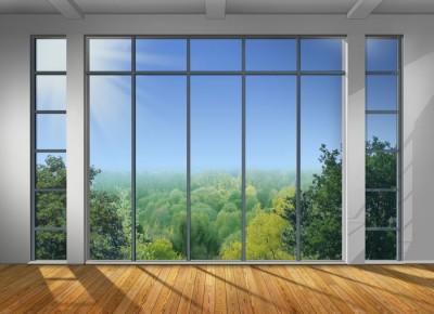 3D Фотообои «Окно с видом на зеленый лес»