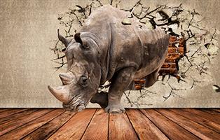 Носорог сквозь стену