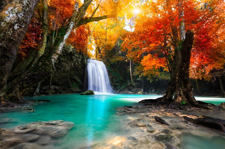 """3D Фотообои """"Водопад в девственном лесу"""""""