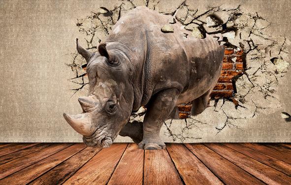 """3D Фотообои  """"Носорог сквозь стену"""""""