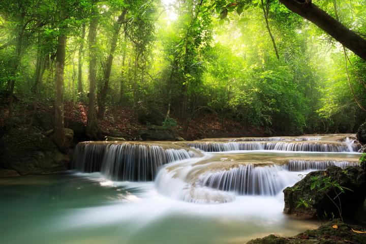 3D Фотообои  Водопад в солнечном лесу<br>kit: None; gender: None;