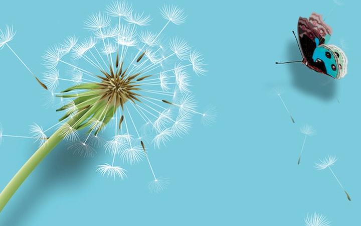 """3D Фотообои  """"Объемный одуванчик и бабочка"""""""
