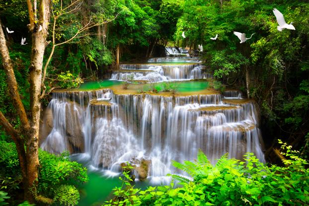 """3D Фотообои  """"Водопад с журавлями"""""""