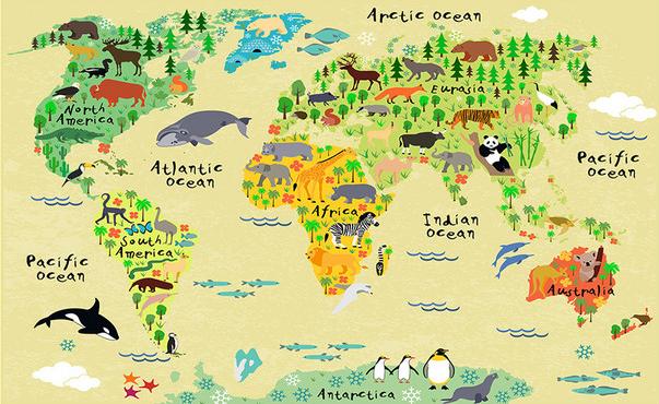 """3D Фотообои  """"Карта мира для детской"""""""