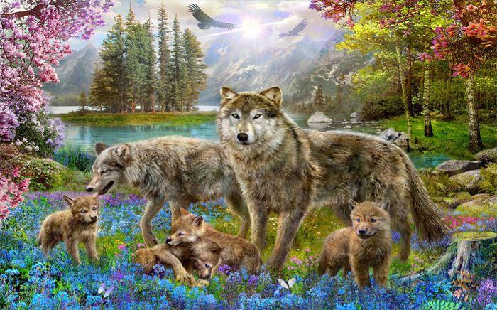 Детские 3D Фотообои «Волки в весеннем лесу»<br>kit: None; gender: None;