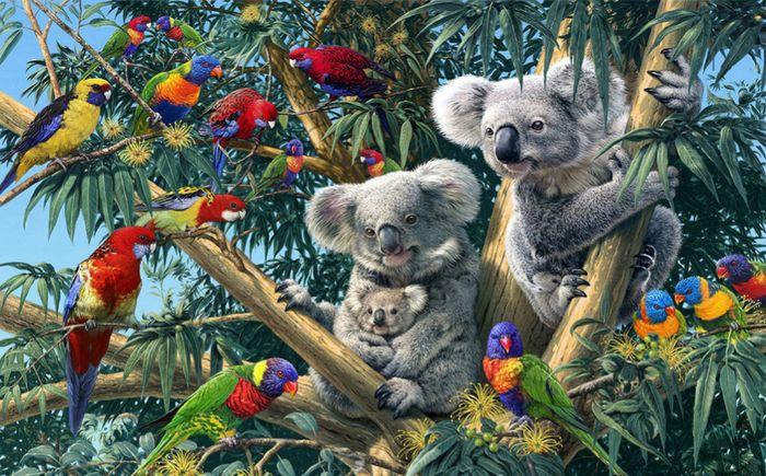 Детские 3D Фотообои «Тропический коалы»<br>kit: None; gender: None;