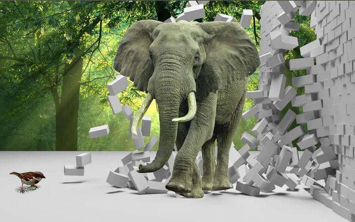 Детские 3D Фотообои «Слон на фоне леса»<br>kit: None; gender: None;