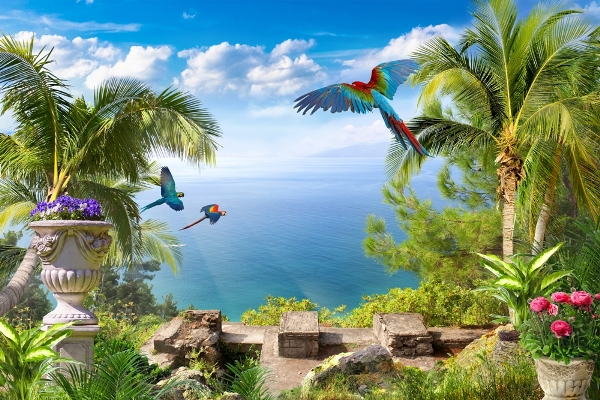 3D Фотообои «Тропические птицы»